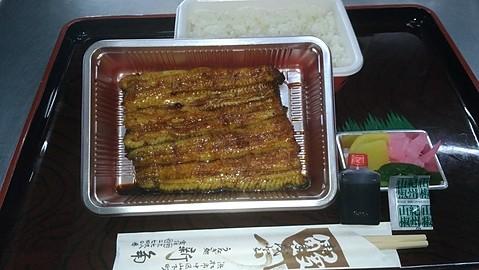 うなぎ蒲焼折弁当(特中)
